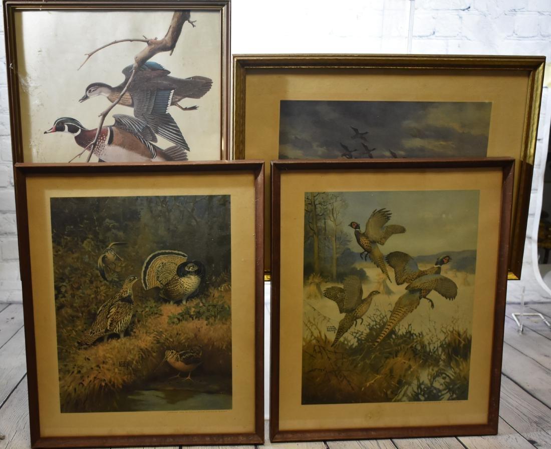Four Framed Wildlife Prints