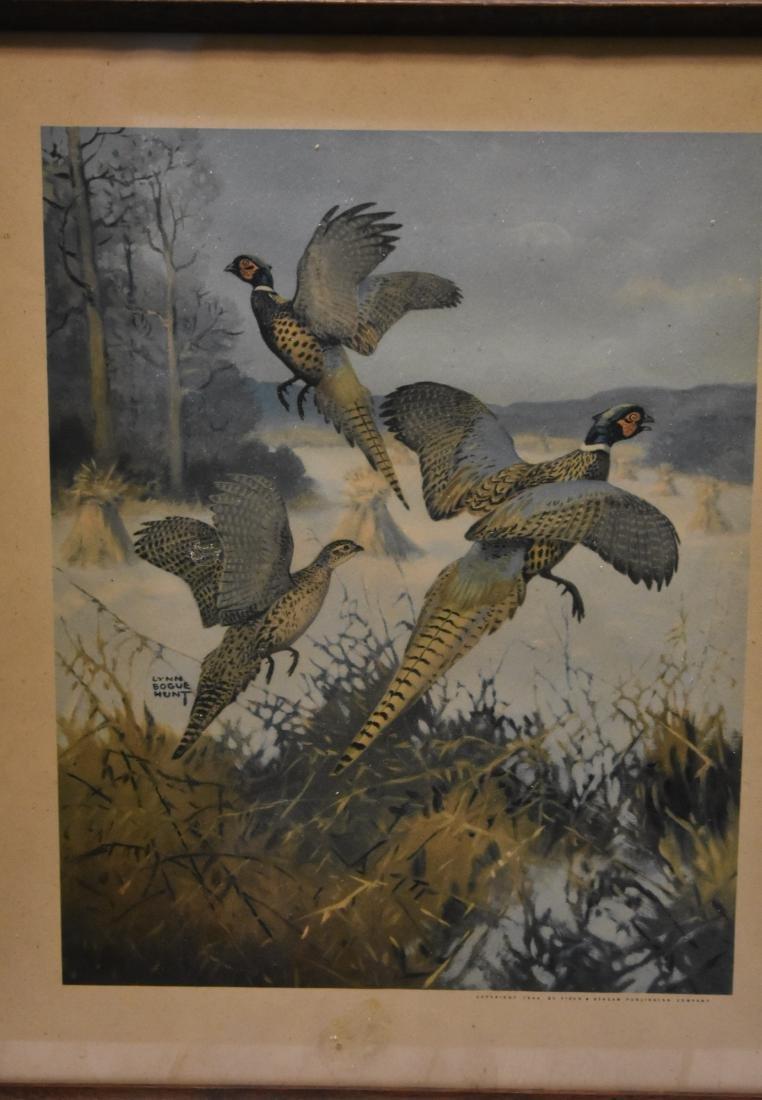 Four Framed Wildlife Prints - 2