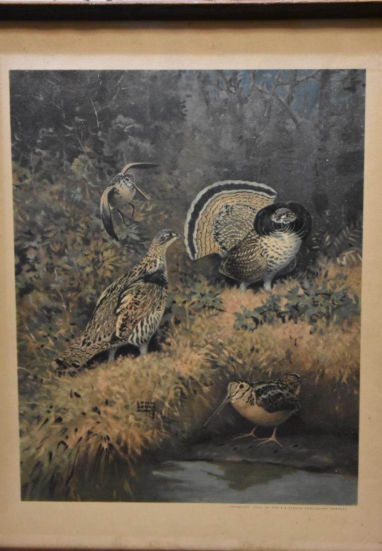 Four Framed Wildlife Prints - 3
