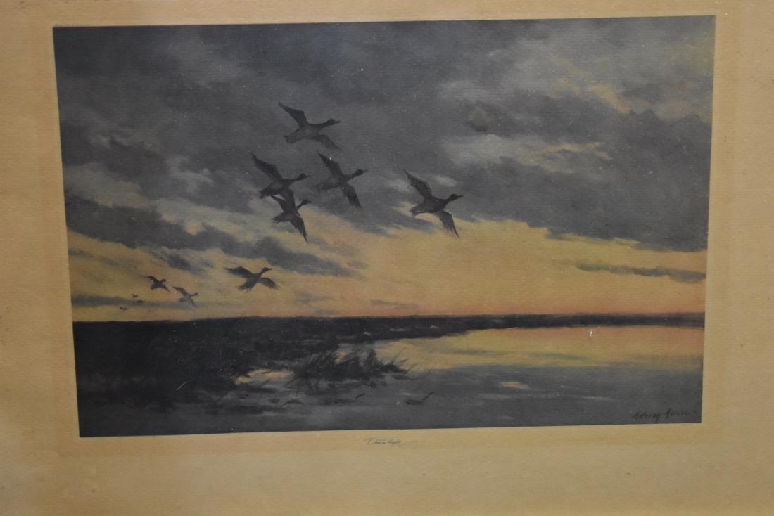 Four Framed Wildlife Prints - 4