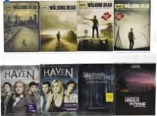 The Walking Dead HavenStephen King Flicks DVD