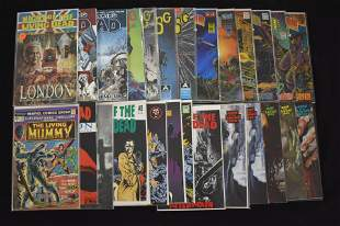 Collection of Zombie Comic Books (25 total)