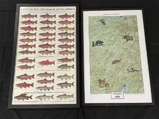 Framed Contemporary Fish Chart & Adirondack Map