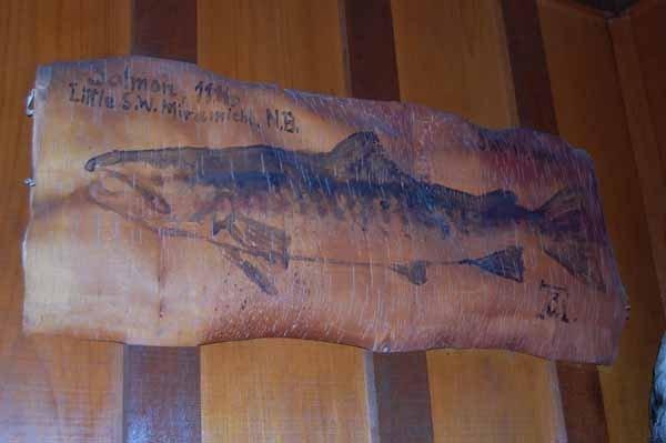 8: Arpad Gerster pike painting on birchbark