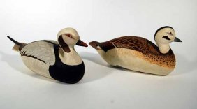 14: Pair of Old Squaw Decoys by Birk