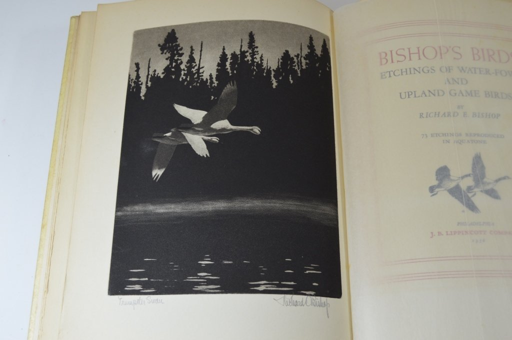 Bishop's Birds by Richard Bishop - 3