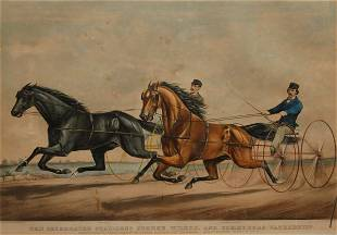 Celebrated Stallions George Wilkins, and Commodore