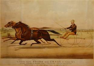 The Trotting Gelding Frank with J.O. Nay, His Runni