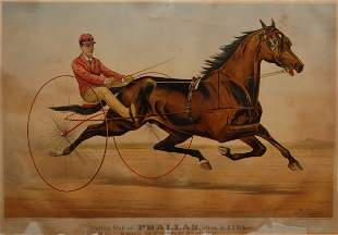 Trotting Stallion Phallas, driven by E.D. Bithers,