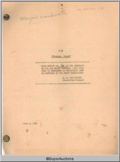 6: Niagara Falls Movie Script