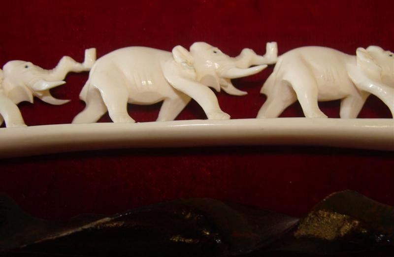 355: Antique Carved Ivory 7 Elephant Bridge on Teak Sta - 2
