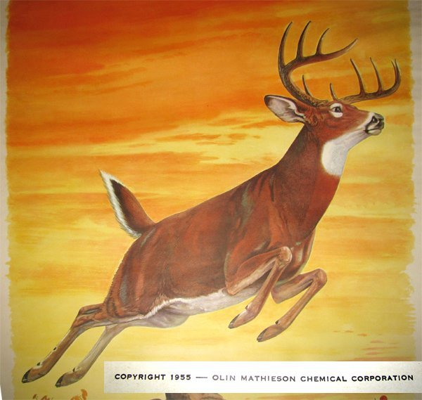 40: 1955 WINCHESTER WESTERN ADVERTISING POSTER - 2