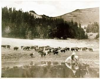 437: Charles J Belden Photograph