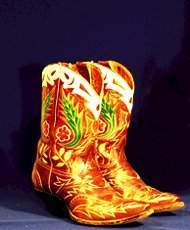 Fancy, Vintage Cowboy BOOTS Two-tone wing