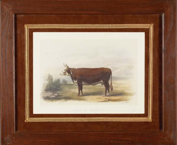 11: Pair of Livestock Lithographs