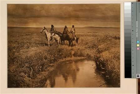 220: Large Original Curtis Photograph