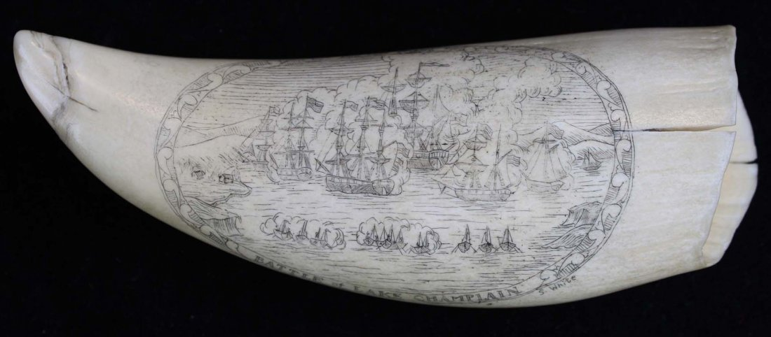 Battle of Lake Champlain scrimshaw tooth