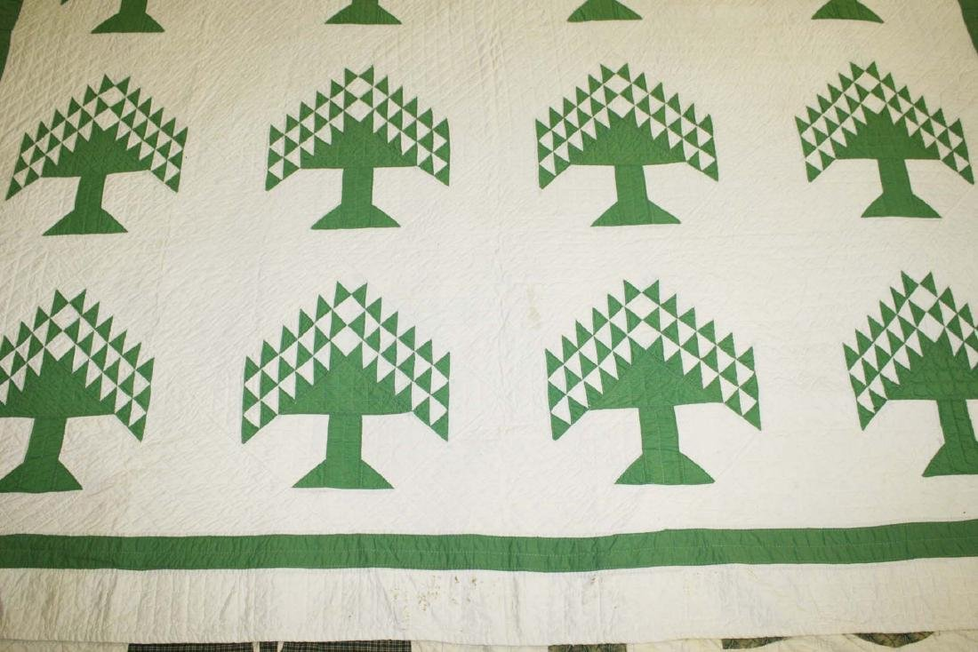 early 20th c pine tree pattern pieced quilt - 5