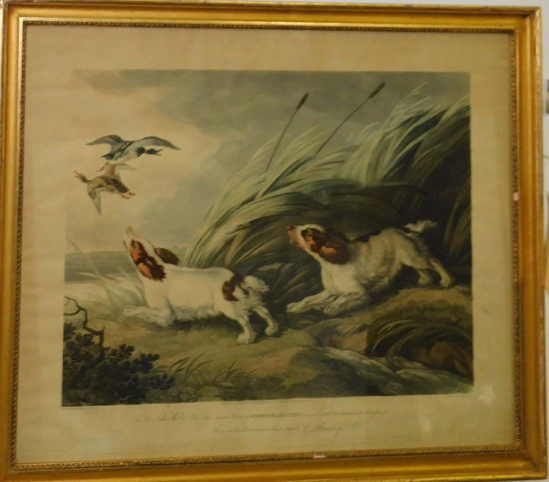 FC Lewis Hand Colored lithograph Springing Spaniels