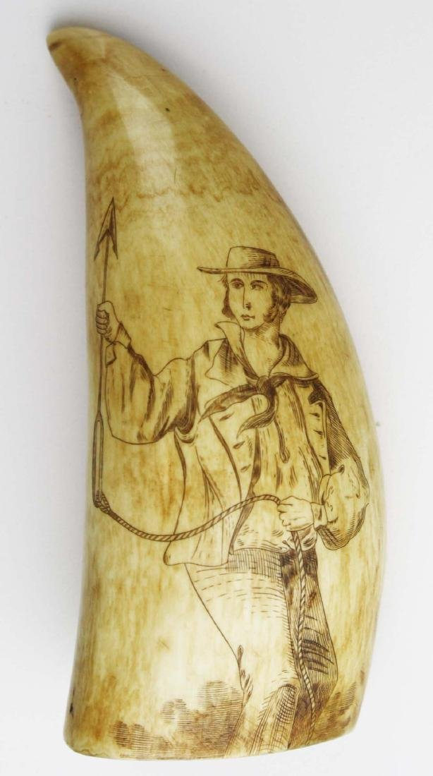 mid 19th c scrimshaw whale's tooth