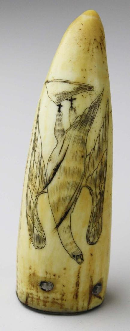 mid 19th c scrimshaw whale's tooth - 2