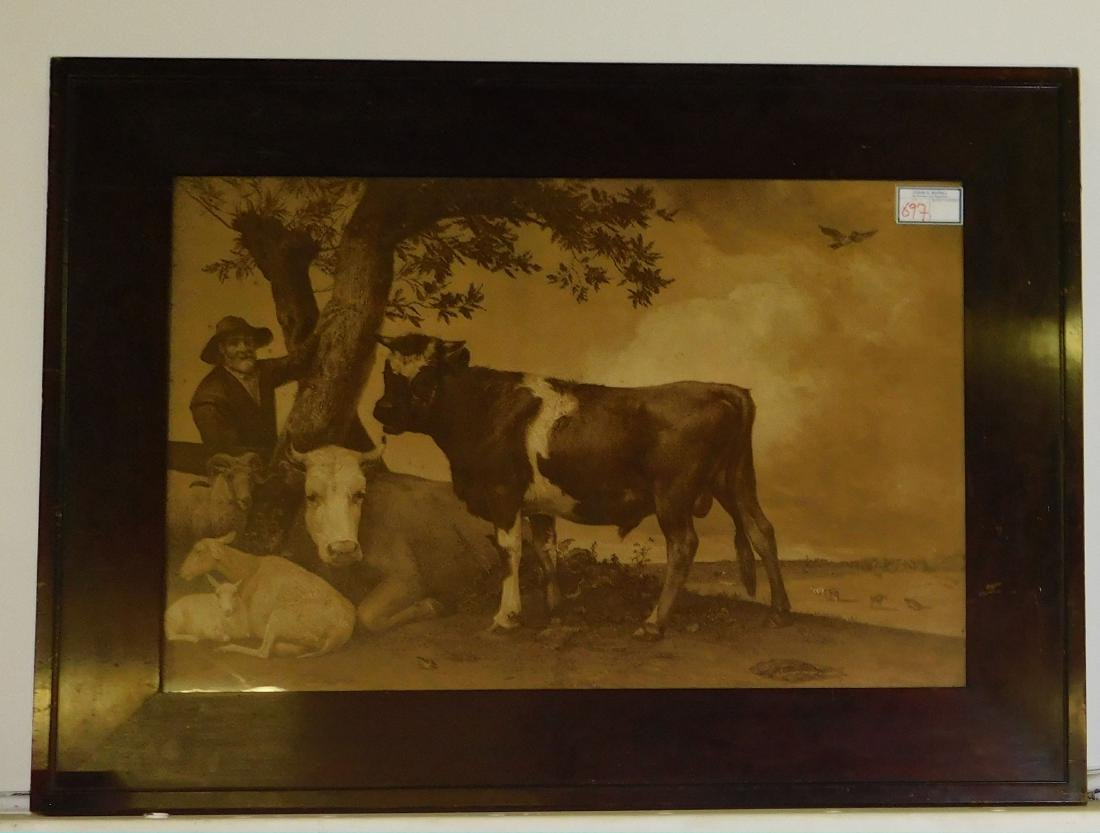 19th c Lithograph of cows