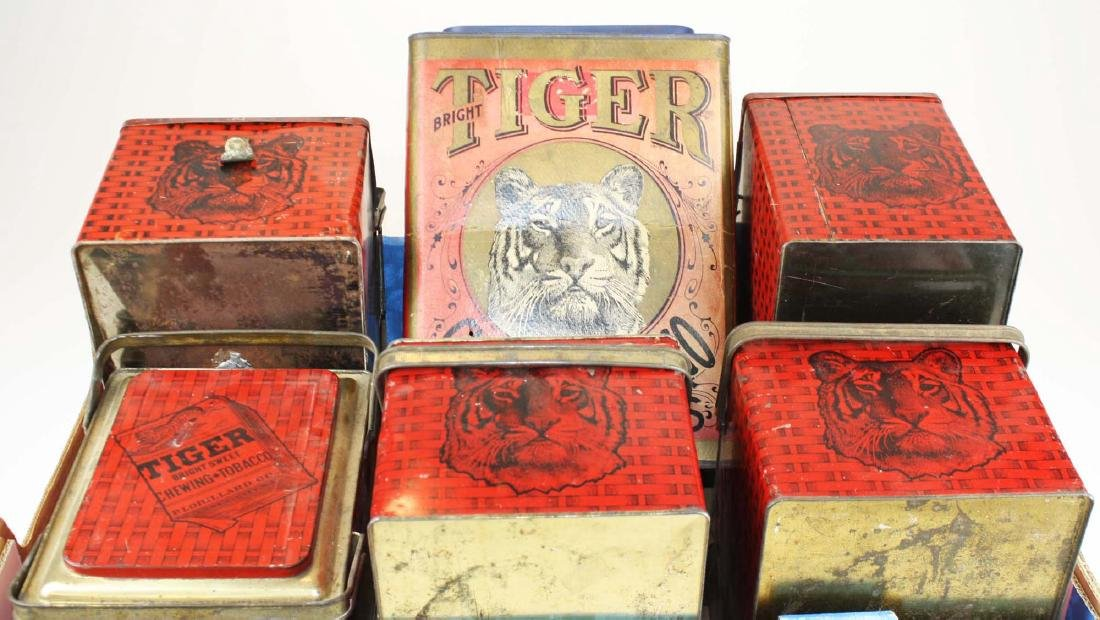 Tiger lunch boxes & boxboard store bin