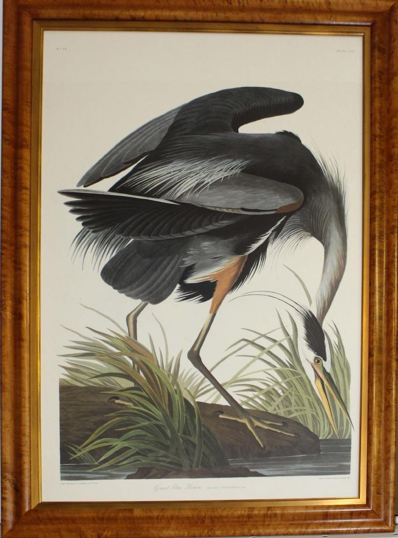 After John J Audubon