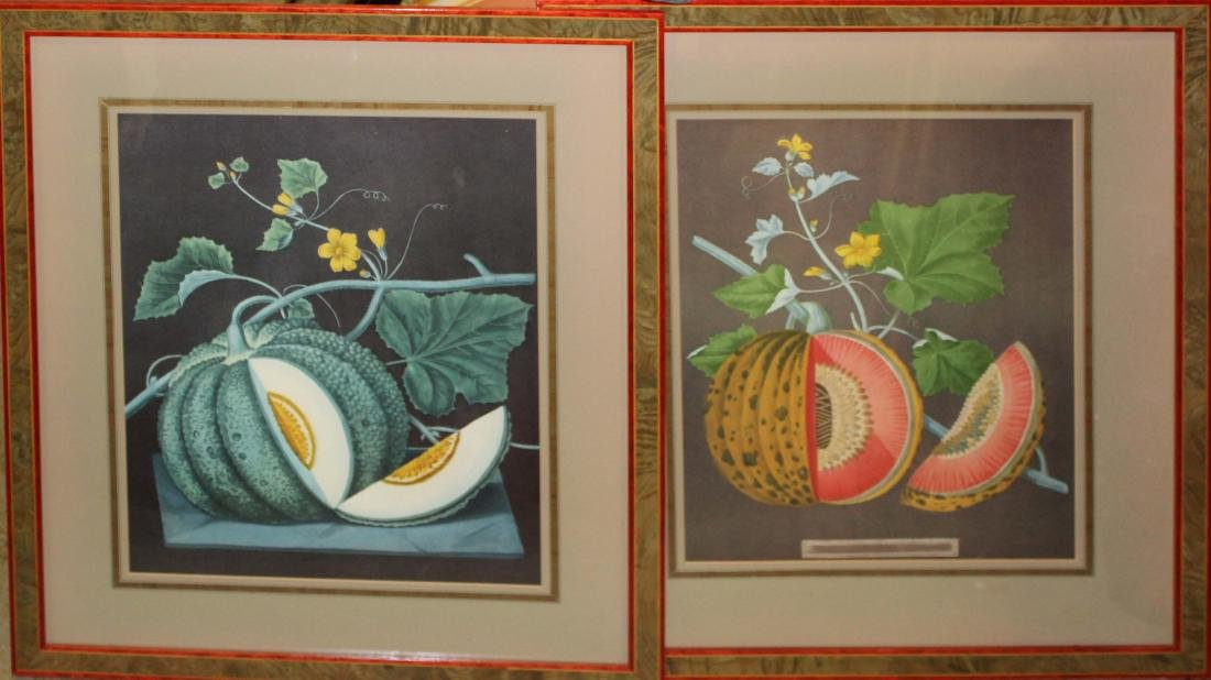 Pair of 19th c Chromolithographs of fruit