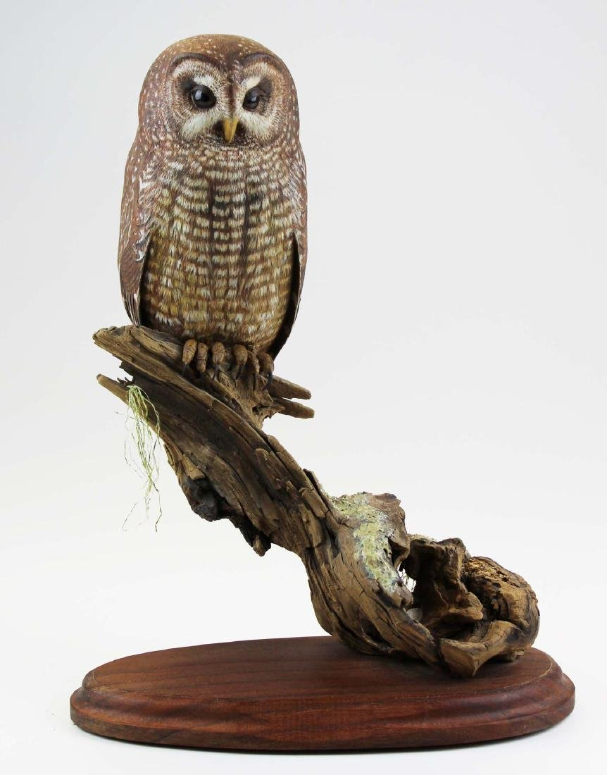 Oustanding life like owl carving by Turner