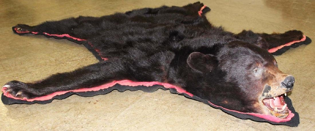 5 ft black bear skin rug