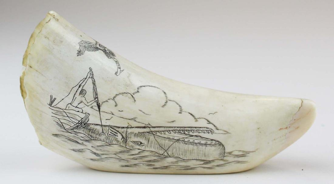 mid 20th c scrimshaw whale's tooth