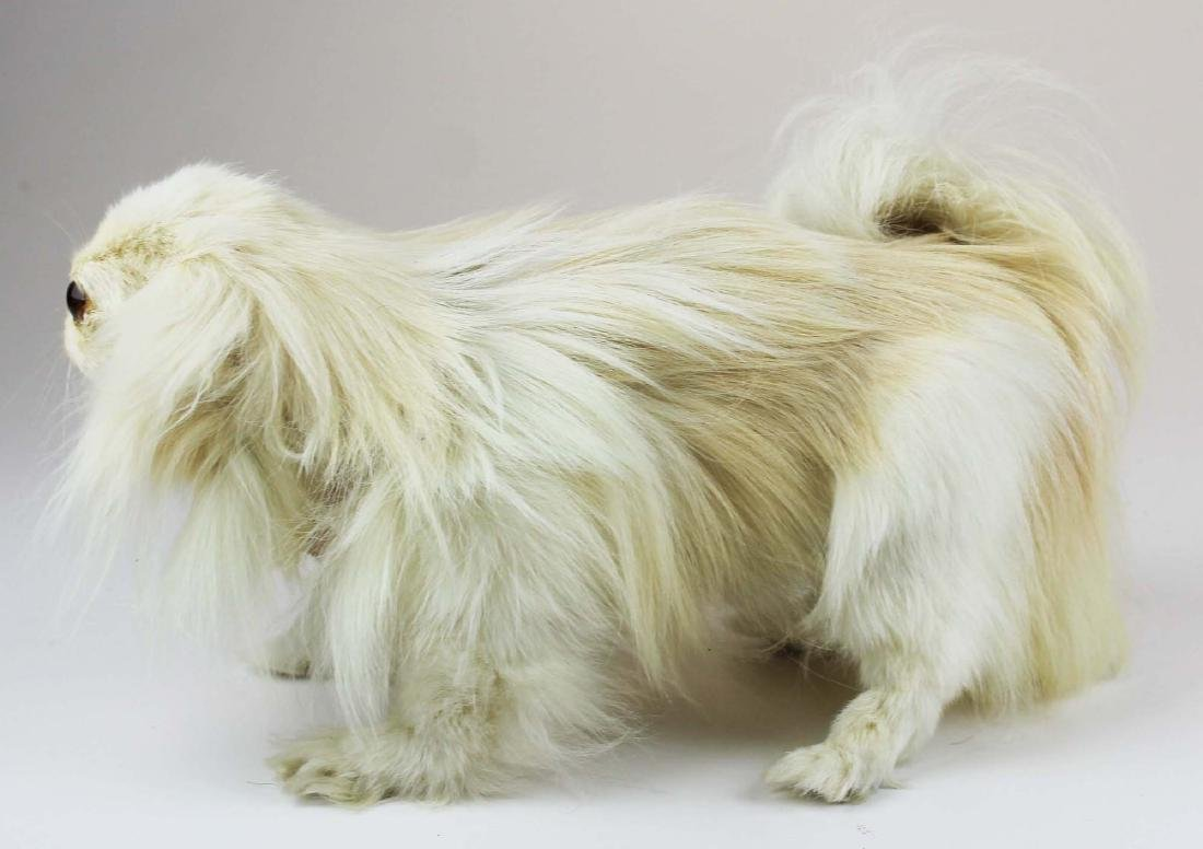 Maltese mounted dog - 3