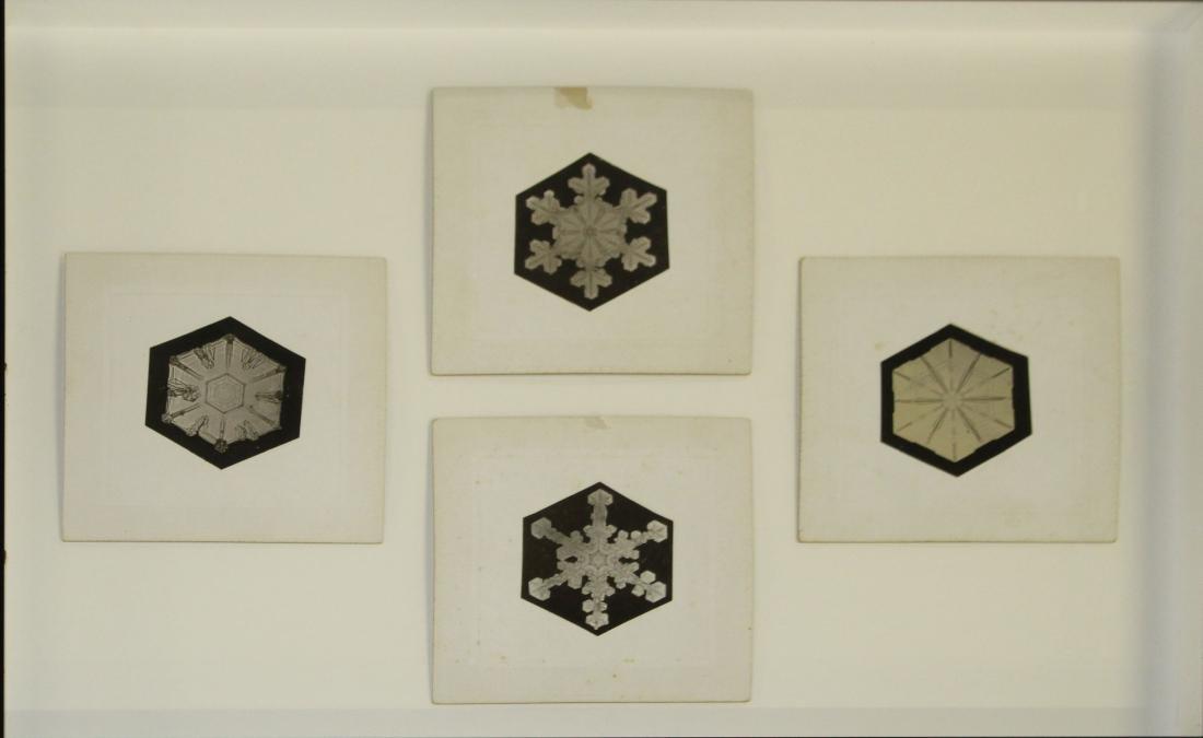 Four Snowflake Bentley silver gelatin prints