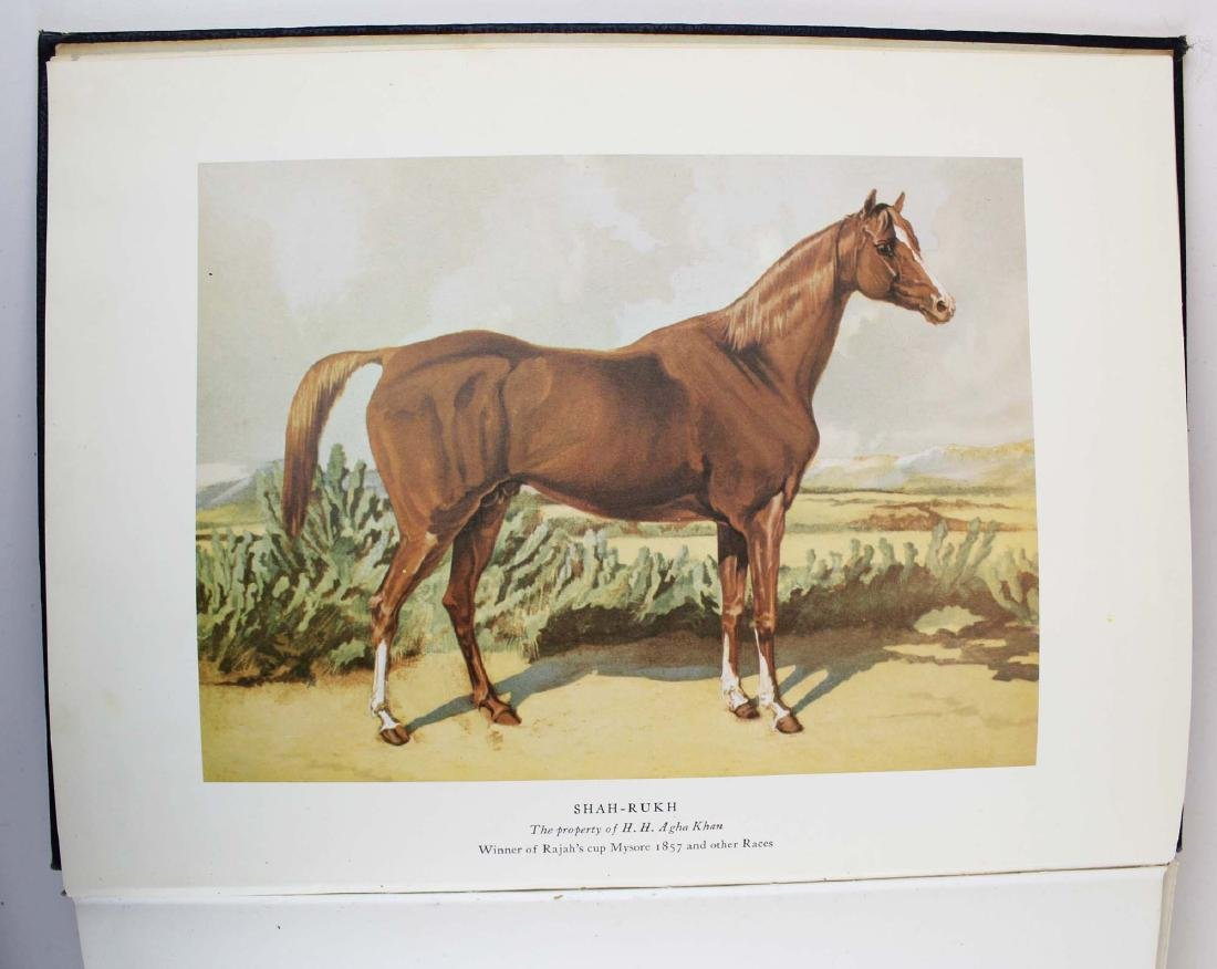 three reference books on Arabian horses - 5