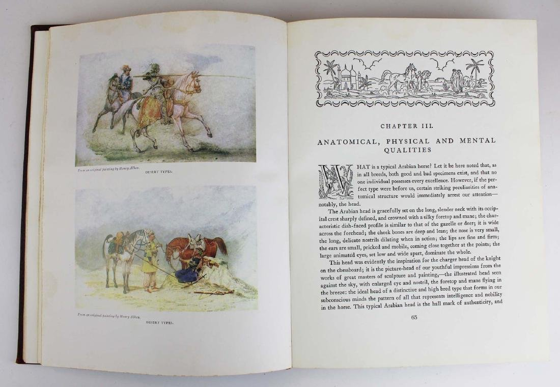 three reference books on Arabian horses - 9