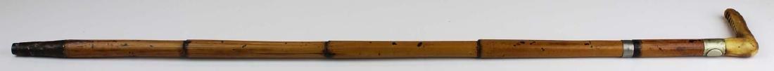 Sword cane - 5