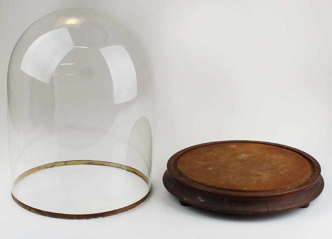 early 20th c clear glass dome - 2