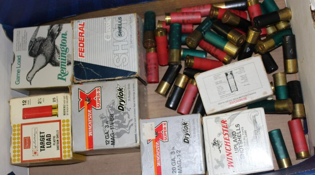 Approx 150 rounds of 12 & 20 ga shells