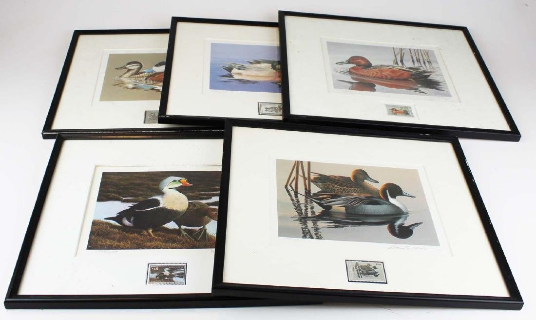 five framed duck stamp prints with stamps