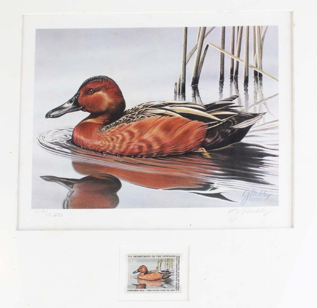 five framed duck stamp prints with stamps - 2