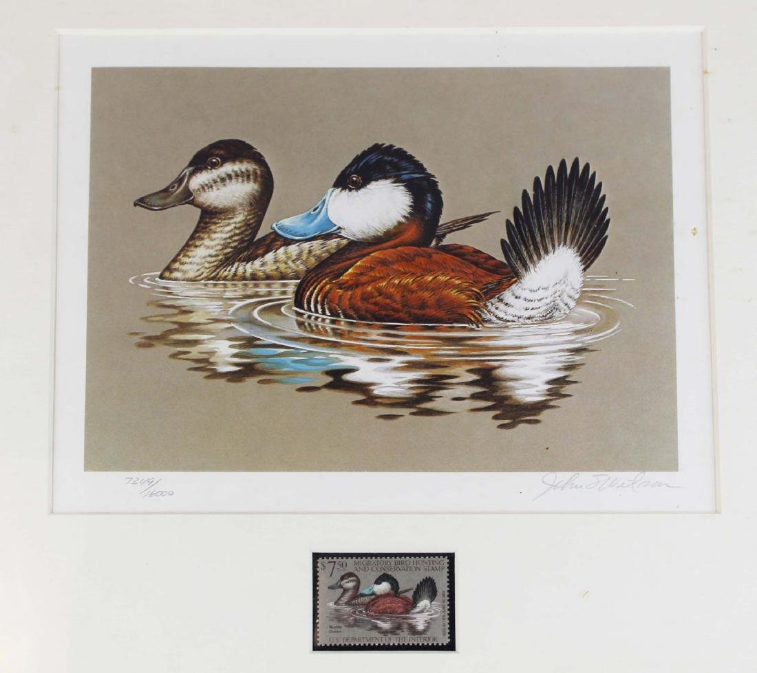 five framed duck stamp prints with stamps - 5