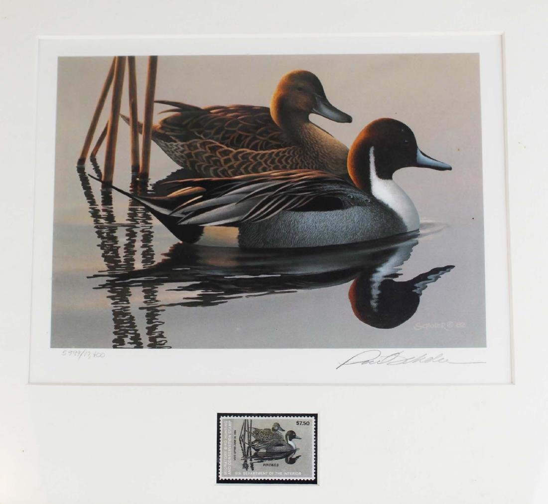 five framed duck stamp prints with stamps - 6