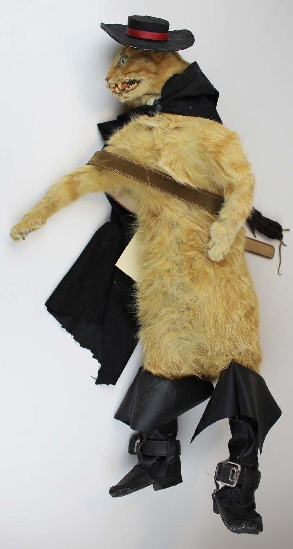 vintage Puss In Boots taxidermy