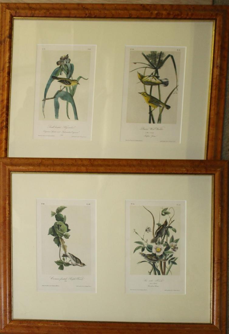 Four JT Bowen Audubon bird prints