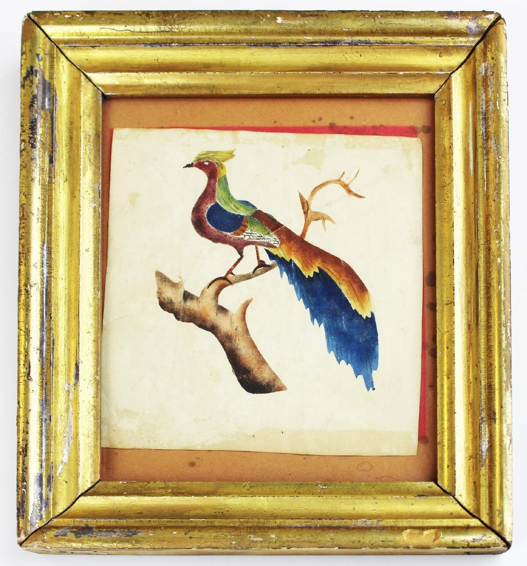 early 19th c New England watercolor of a bird