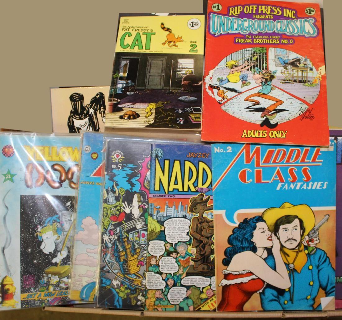 Lot of Countercultural Comics
