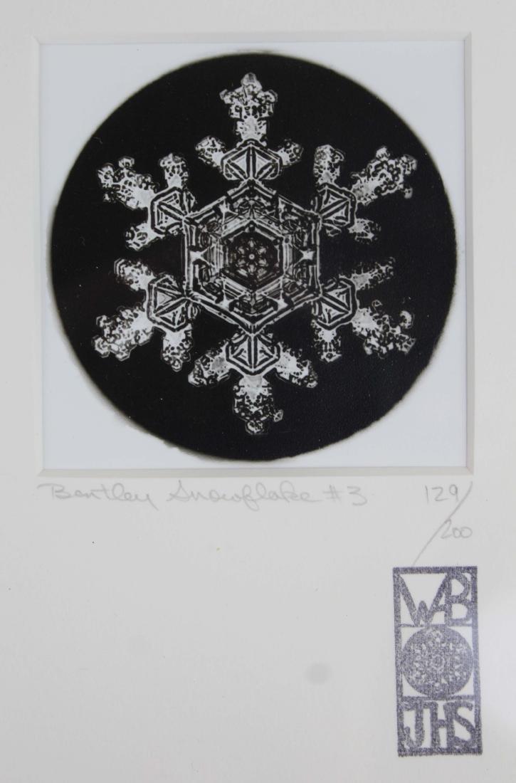 four Snowflake Bentley photographs - 3