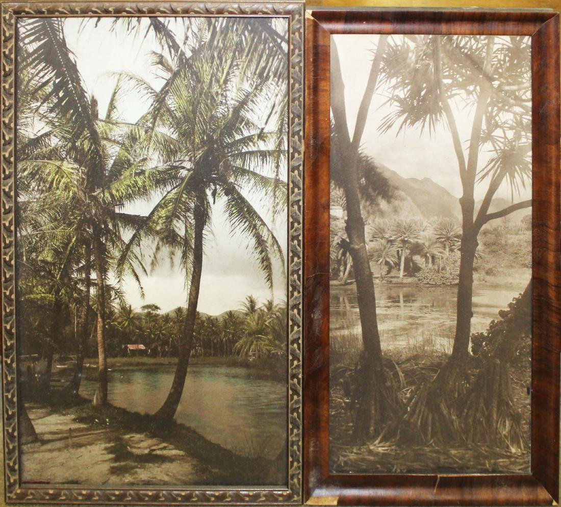 mid 20th c South Pacific photos, paintings