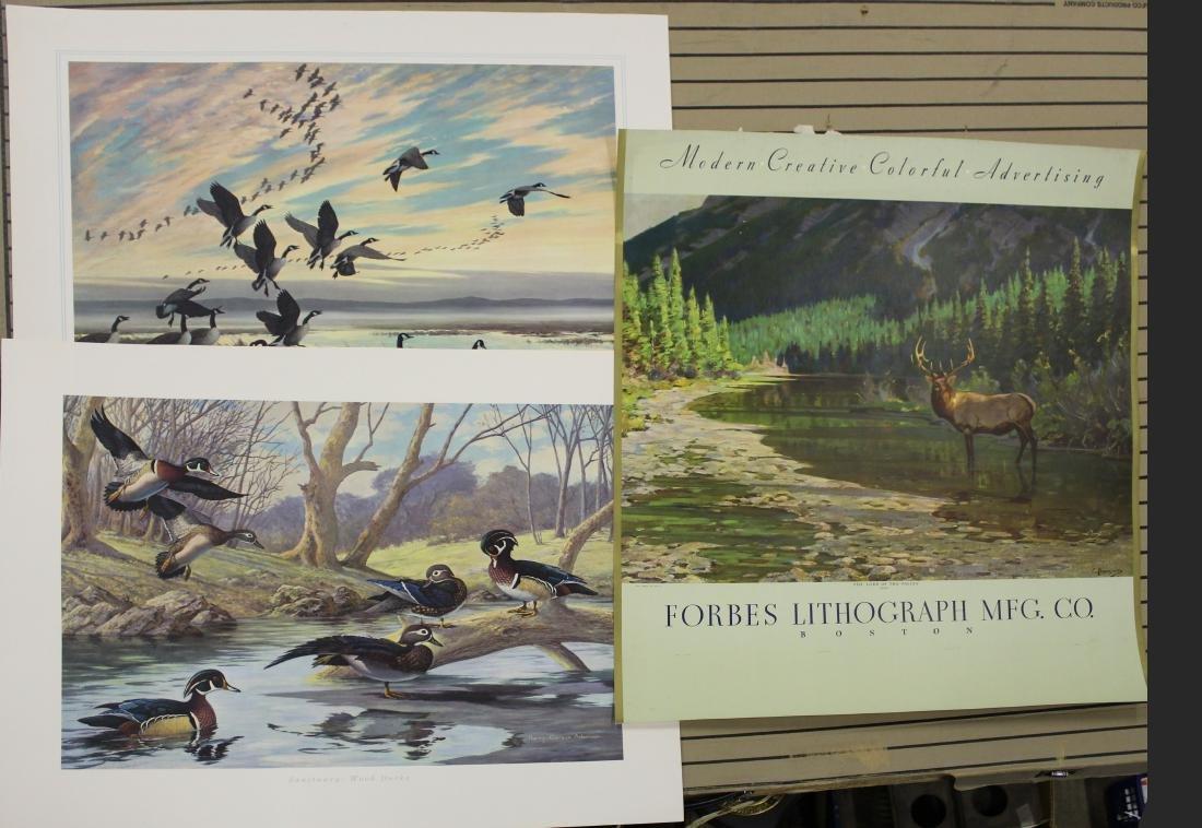Three Forbes Litho sporting prints